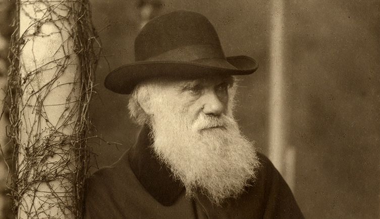 """Charles Darwin rediscovered: Christianity, agnosticism, and creative design in the life of the world's most spiritual """"atheist"""""""